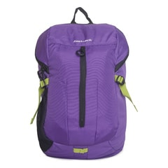 Fastrack Purple Backpack-A0511NPR01