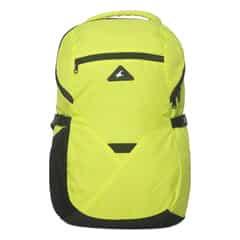 Fastrack Green Backpack For Men-A0612NGR01