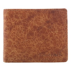 Fastrack Brown Wallet for Men