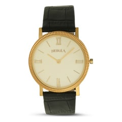 Titan Nebula 18KT Solid Gold Watch For Men in White Dial-ND1045DL01