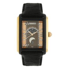 Titan Brown Dial Analog Watch For Men-1662KL02