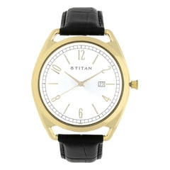 Titan Retro Silver Dial Analog Watch for Men-1675YL01